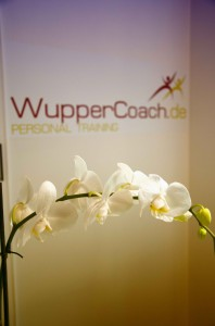 Formation EMS Wuppertal, wuppercoach